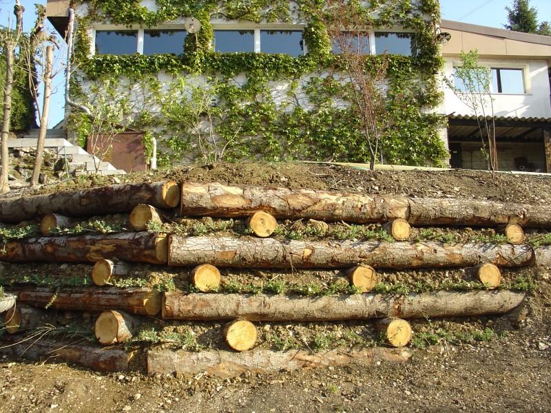 Am nat g nie forestier le bois au service de la nature for Amenagement jardin en pente forte